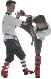Wing Chun Kung Fu Delft